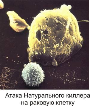 атака на раковую клетку
